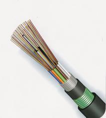 供应普天12芯GYTA53直埋松套层绞式光缆