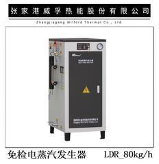 免检型电蒸汽发生器50-125Kg/h