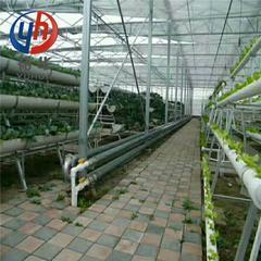 供应温室大棚专用翅片管 钢制高频焊螺旋翅片管