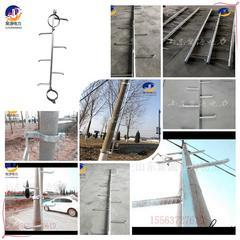 电力电杆固定爬梯 锥形杆等径杆定做加工钢管爬梯