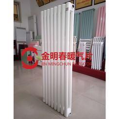 QFGZ218钢制柱型暖气片\钢二柱椭圆管暖气片厂家