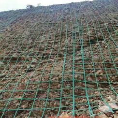 恒全12*12厘米网孔山体绿化植物攀爬网格