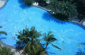 泳池消毒剂