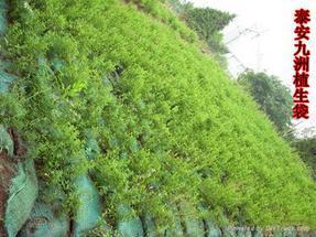 绿化简洁植生袋