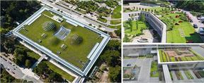 屋顶绿化 园林绿化工程施工河南景绣