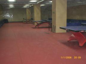 室内专用乒乓球地板,乒乓球馆专用地胶.乒乓球专用塑胶地板胶.乒乓球PVC地板