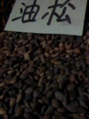 油松种子价格