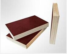 遵义建筑模板(九层板)工程模板