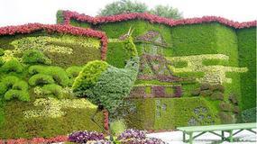 广州植物墙公司告诉你需了解植物墙的几个生长条件