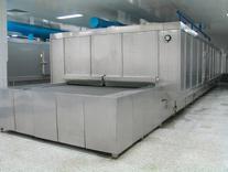 网带式单体速冻机