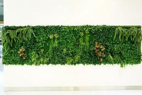 广州市屋顶绿化公司来爆料说明屋顶绿化的全面优势