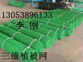 安徽黄山三维植被网价格