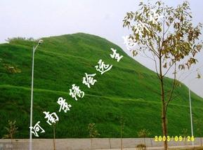 河南景绣专业从事边坡绿化 生态修复 园林绿化工程施工