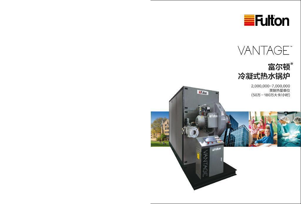 富尔顿VTG冷凝式热水锅炉 立式
