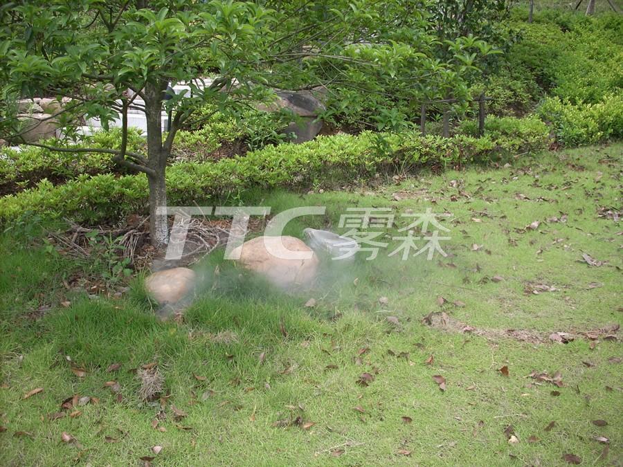 供应TTC雾森雾石系列-九龙山庄景观雾石工程