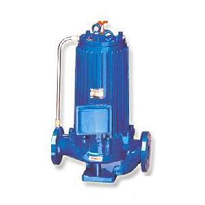 低噪音无振动苏州屏蔽式管道泵